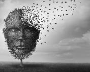 Choosing the Best Digital Mental Health Tools for Patients